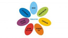 Si Luna Azul gobernara, estos serían los siete ministerios.