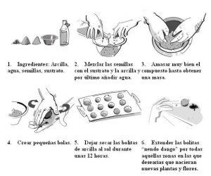 Cómo hacer las bombas de semillas