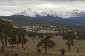 Pico Ocejón, desde Campisábalos. Fragmento de una fotografía de Rober f García.