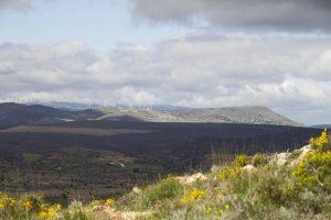 Yacimiento de Tiermes, con el Pico de Grado al fondo. Fotografía de Rober f García.